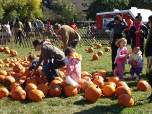 7 Pumpkin Patches in the City - KidTrail Pick