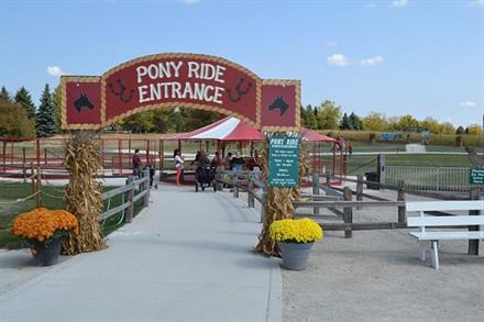 10 High Energy Pumpkin Patches Near Chicago - KidTrail Pick